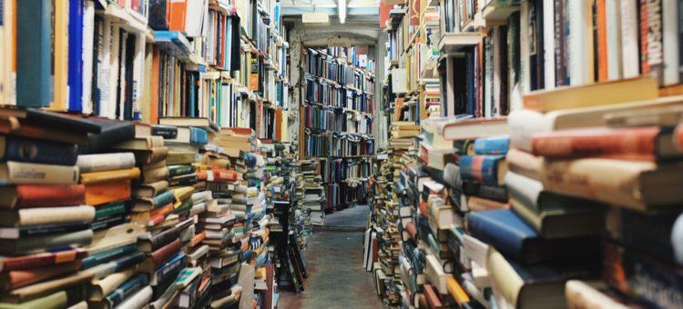 Znajda Jones i najbardziej niesamowita księgarnia świata