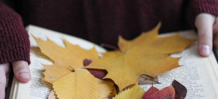 Jesienią czytamy kryminały